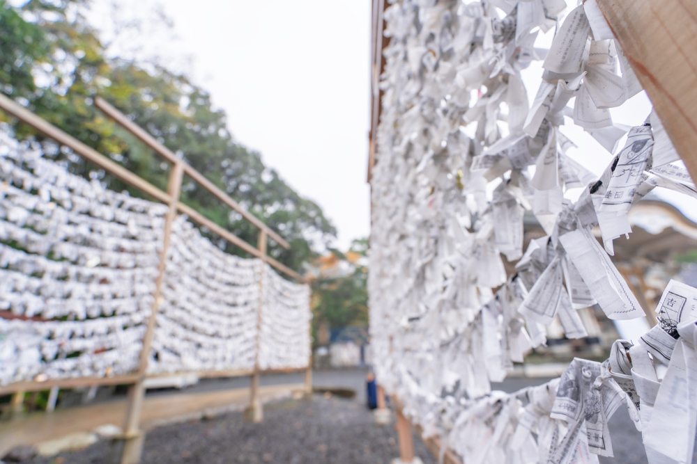 Rows of omikuji fortunes