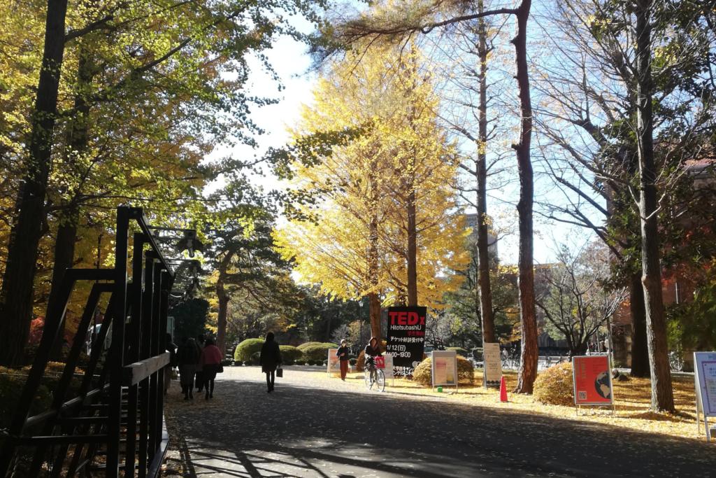 มหาวิทยาลัยฮิโตสึบาชิ