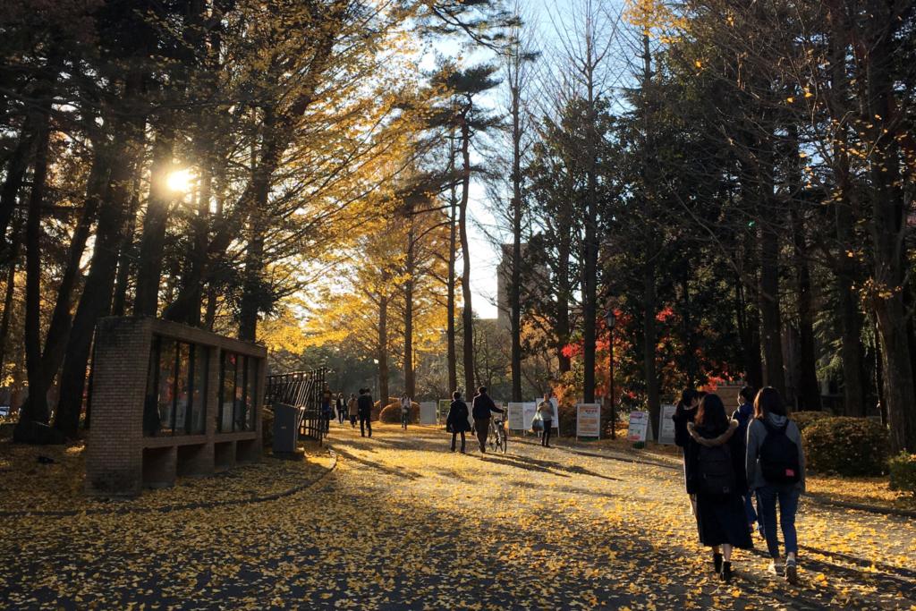 แคมปัสมหาวิทยาลัยฮิโตสึบาชิ