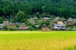 nông thôn Nhật Bản