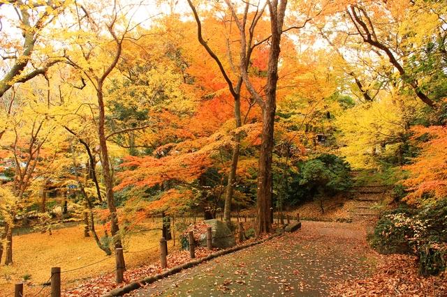 Công viên Naritasan