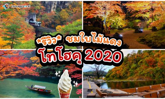 tohoku-autumn-in-2020-corona-covid-19
