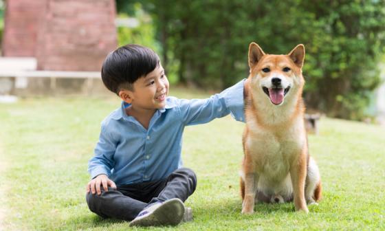nuôi thú cưng tại Nhật