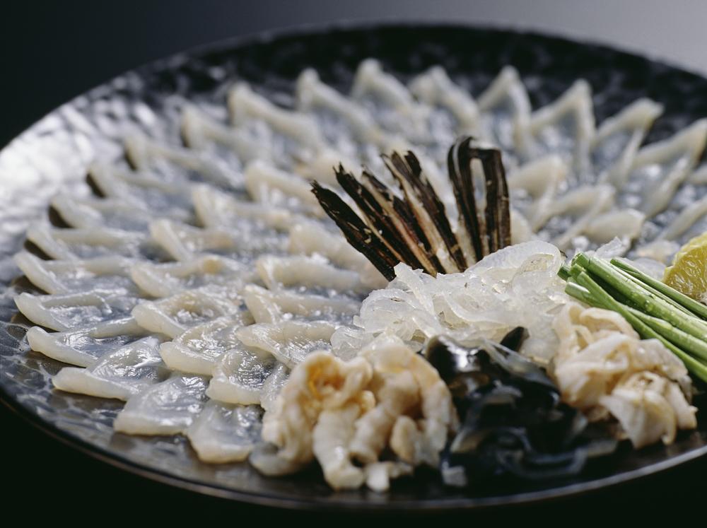 Fugu pufferfish sashimi