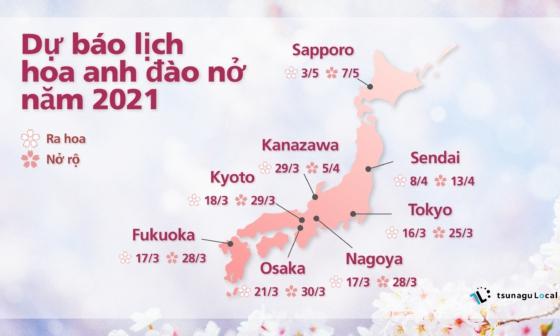 dự báo lịch hoa anh đào nở năm 2021