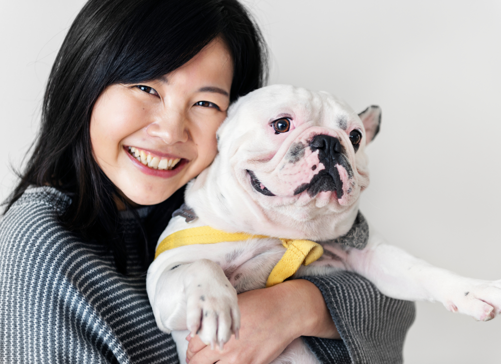 steps to bringing your pet into japan