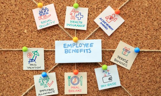 Các chính sách phúc lợi của nhân viên công ty